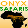 onyx safaris