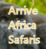 arrive africa